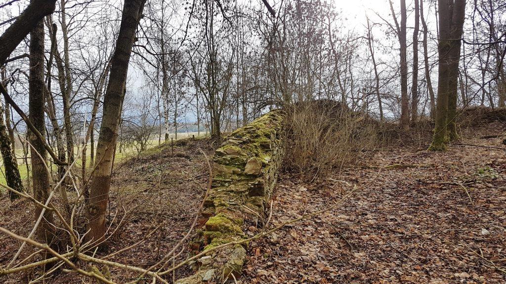 Severní část bývalé farní zahrady