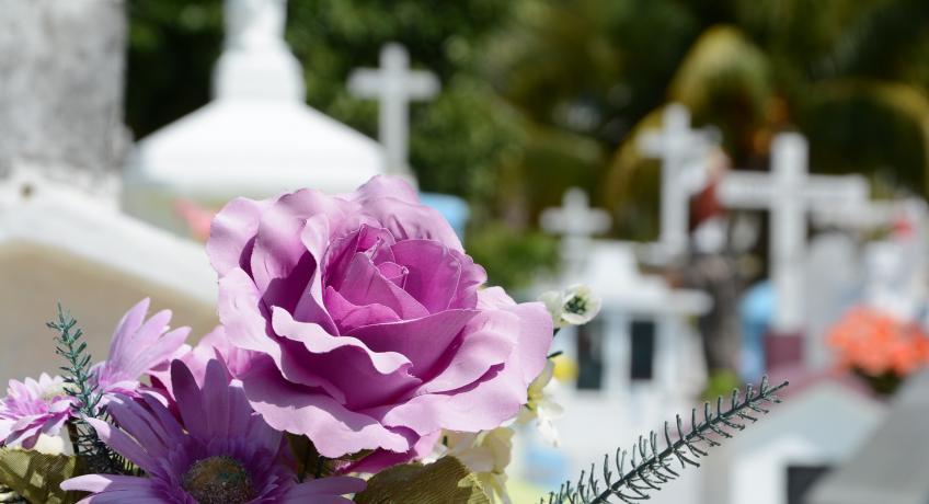 Pohřeb + Marie Andrýskové 26.9.2o2o v 10:30 nebude přenášen živě.