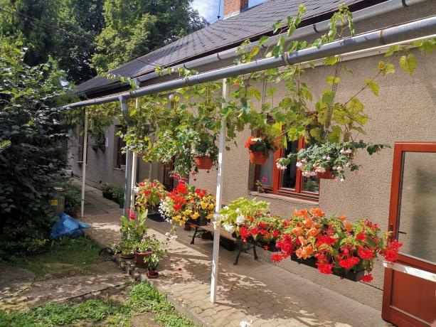 zeranovice---zahrada